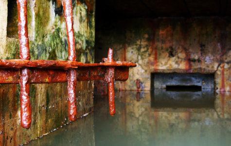 Ricerca e ispezione di perdite idriche e fognarie