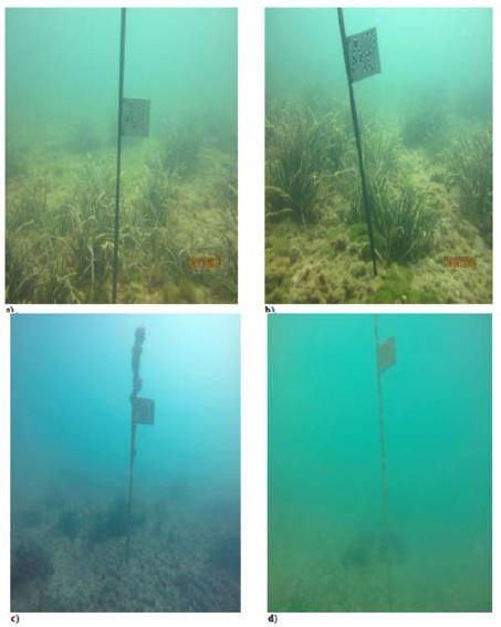 Realizzazione del prolungamento della condotta sottomarina e recapito finale degli impianti di depurazione di Bari Ovest e Bitonto