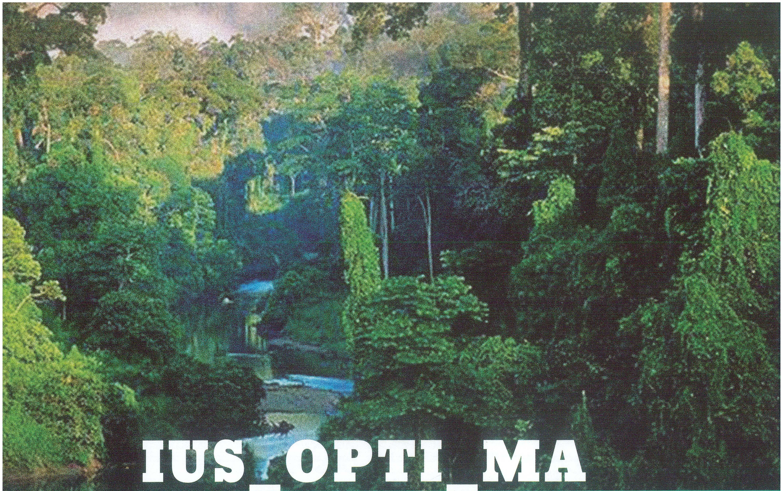 IUS_OPTI_MA